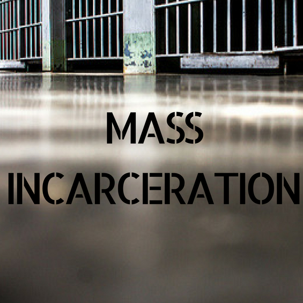 Mass Incarceration Project